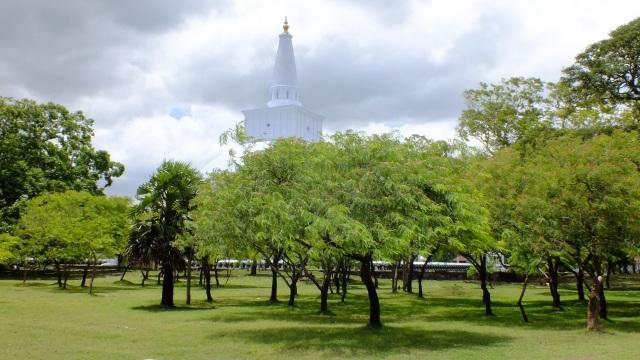 sri lanka temple in the trees