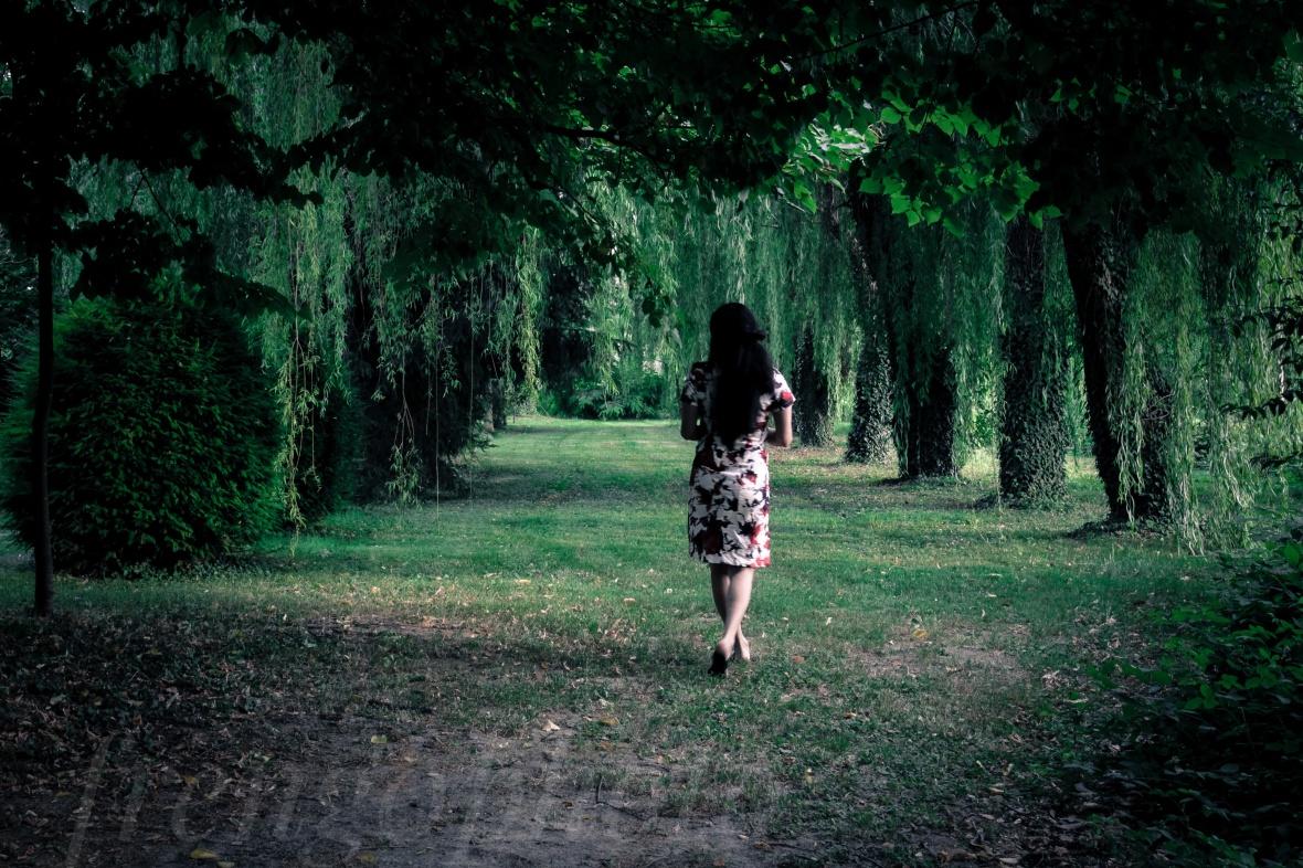 Giardino di villa sagredo, passeggiando
